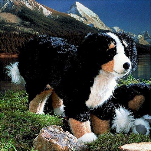 Kösener 4720 - Berner Sennenhund, stehend