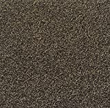 All American Carpet Tiles Wellington 23.5 x 23.5 Plush Easy to Install Do It Yourself Peel and Stick Carpet Tile Squares – 9 Tiles Per Carton – 34.52 Square Feet Per Carton (Whisperwood)
