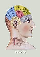 Phrenology Head Chart Vintage Anatomy Phrenology Poster - No Frame (16 X 24)