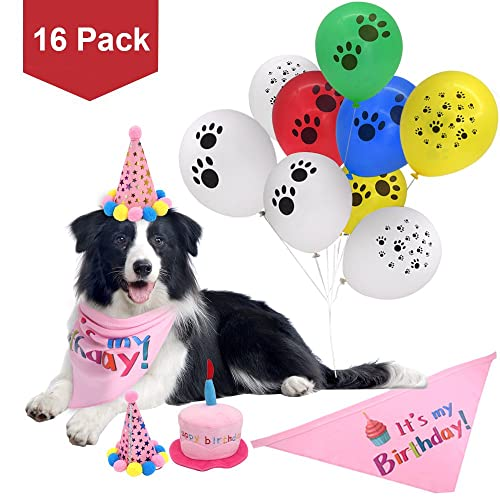 Birthday Hat For Dog Amazon