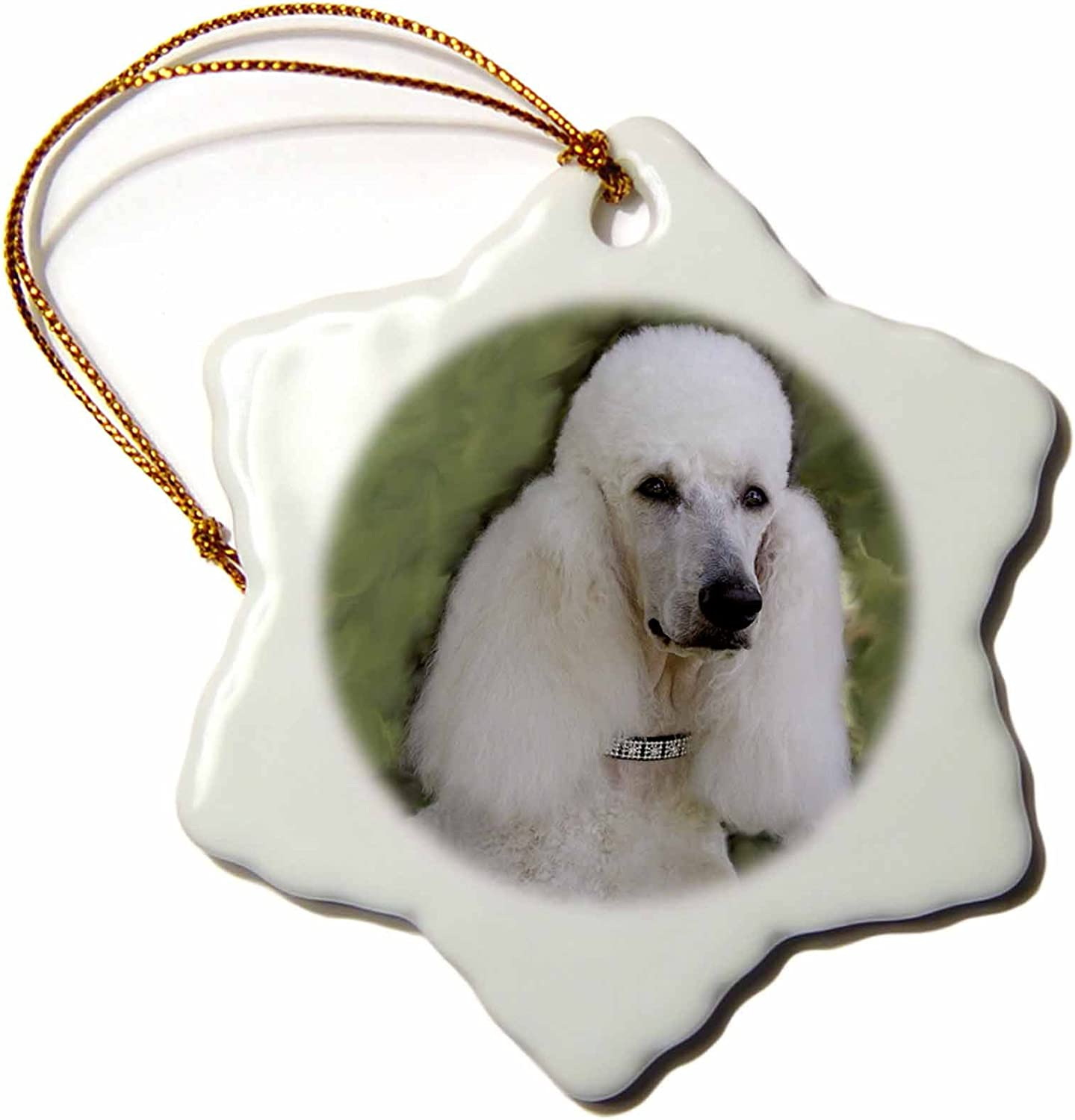Amazon Com 3drose Orn 1298 1 Standard Poodle Porcelain Snowflake Ornament 3 Inch Home Kitchen