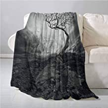 Horror House Decor Lightweight Blanket Black and White Dramatic Mist Sky Gulls in Air Lonely Tree Enchanted Windy Day All Season Blanket 70 x 90 Inch Gray