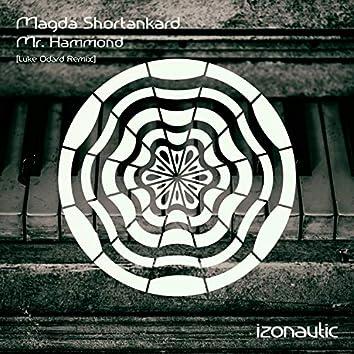 Mr. Hammond (Luke Odard Remix)