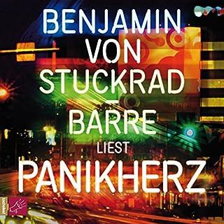 Panikherz audiobook cover art