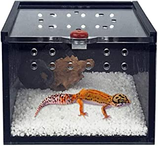 Best travel cage for bearded dragon Reviews