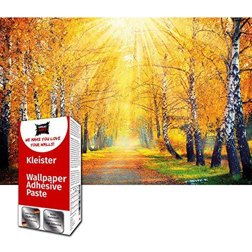 GREAT ART Photo Carta da Parati – bosco in autunno – autunnale quadro murale foresta d\'oro alberi a foglie caduche radura strada Viale con alberi – 210 x 140 cm 5 pezzi e colla