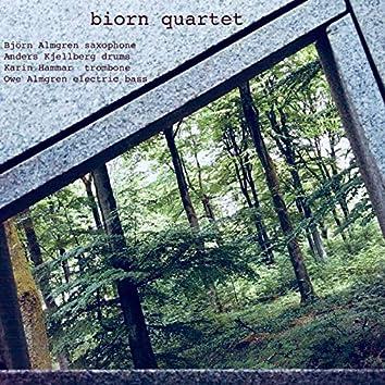 Biorn Quartet