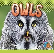 Owls (Awesome Animal Lives)
