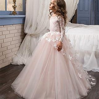 女の子のパーティードレス フラワーガールズ最初の聖体拝領レースアップリケ刺繍キッズプリンセスウェディングブライドメイド床の長さの薄いチュールのドレス フォーマルなパーティーの誕生日の卒業プロムのダンスのボールのドレスドレス (色 : ピンク, サイズ : 4-5T)