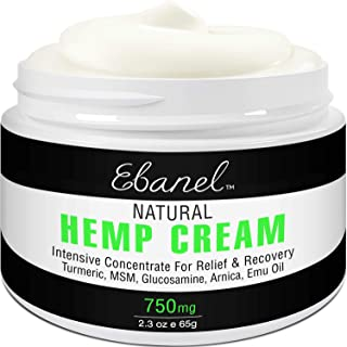 Max Strength Back Pain Relief Cream, 2.3oz Purest 750mg Hemp Extract Hemp Cream Ointment Rub for Back Pain, Arthritis, Joint Pain, Hip Pain, Muscle Soreness, Instant Pain Relief, Non-GMO, Made in USA