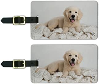 Golden Retriever Puppy Dog and Blanket Luggage ID Tags Carry-On Cards - Set of 2