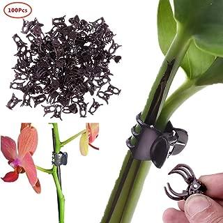Taille Unique 100/Pcs Fruits L/égumes Greffe Clips Plantes de Jardin Semis Outils Transparent GEZICHTA Plantes Clips de Greffe