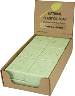 Best eucalyptus products australia Reviews