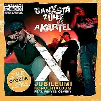 X (Jubileumi Koncertalbum)