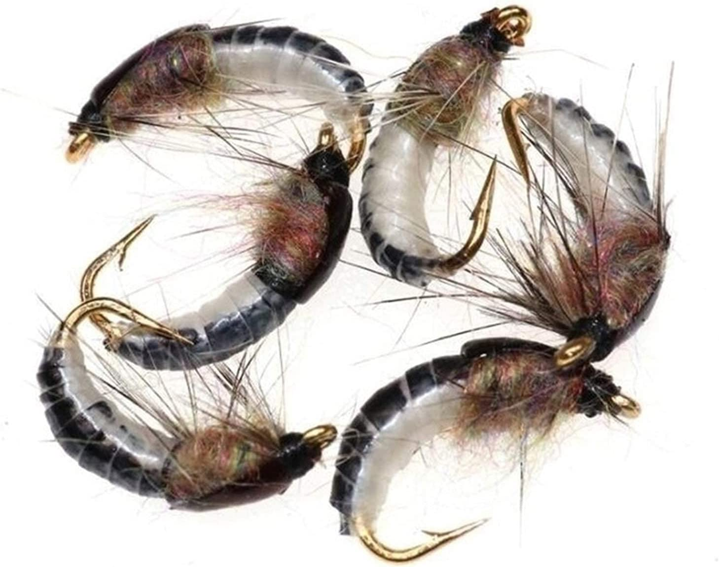 VHNBVHGKGHJ Bait 16 24 32 48Pcs Nymph Direct store for Scud Fly Realistic Tr Year-end annual account