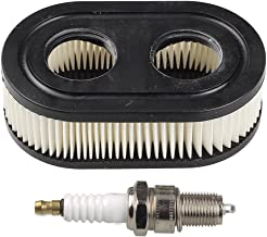 Best spark plug for briggs & stratton 550 series Reviews