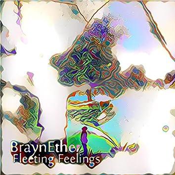 Fleeting Feelings