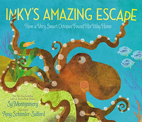 Image of Inky's Amazing Escape: How a Very Smart Octopus Found His Way Home