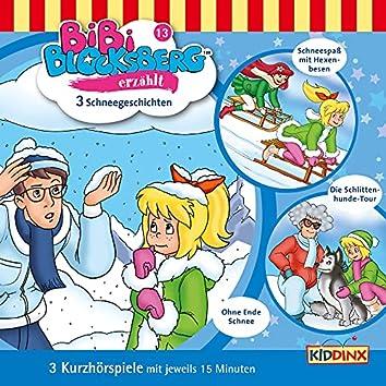 Kurzhörspiele - Bibi erzählt: Schneegeschichten