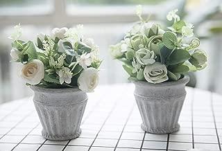 Bluecho Artificial Flowers With Vase Faux Peony Silk Flowers Arrangements For Wedding Home Desk Decoration Set of 2