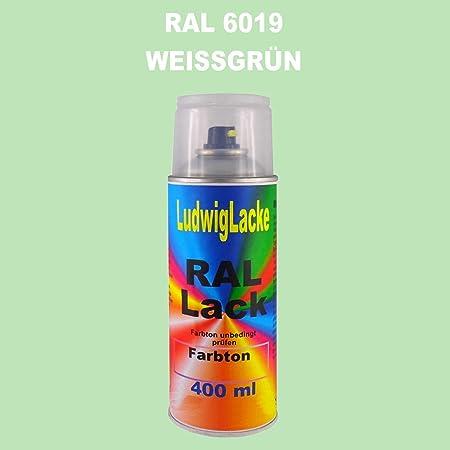 Ral 6019 Weissgrün Matt 400 Ml 1k Spray Auto