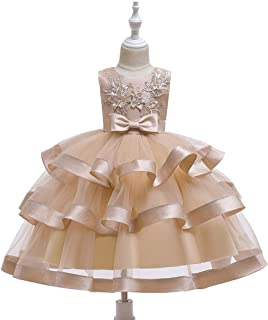 Luxury Children Princess Dress Embroidered Sleeveless Dress Princess Wedding Dress Tutu Stage Catwalk Costumes Girls Dress Butterfly Festival ryq (Color : Khaki, Size : 140cm)