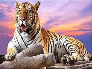 Amazon It Tigri Dipingere Con I Numeri Kit Per Il Fai Da Te