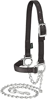 Weaver Leather Nylon Adjustable Sheep Halter with Chain Lead