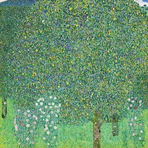 Niik Stampa cespugli di Rose Gustav Klimt 90 x 90 cm Falso d'autore su Tela