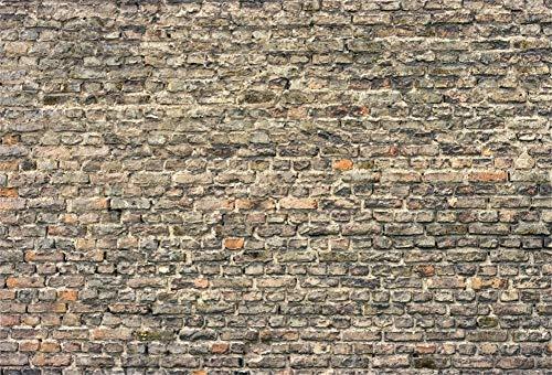 Fondos de Pared Pared de ladrillo Viejo Cemento Fiesta Bebé Niño Patrón Retrato Fondo fotográfico Estudio fotográfico A73x2.2m