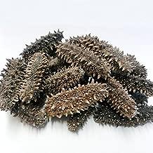 乾燥なまこ 北海道産乾燥海参【特A品】4Lサイズ69個前後入り(1kg)