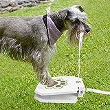 DKEE Comedero para Mascotas bebederos Bebederos pie Mascota actualización sección de Mascotas Perro de jardín Fuentes de Agua Potable