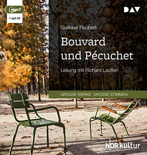 Bouvard und Pécuchet: Lesung mit Richard Lauffen (1 mp3-CD)