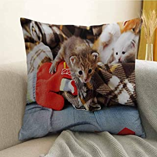 Antony Petty Cats Printed Custom Pillowcase Kittens and Mittens Newborns Baby Animals in an Plain Blanket Wood Play Toys Adorable Decorative Sofa Hug Pillowcase W24 x L24 Inch Multicolor