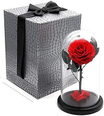 プリザーブドフラワー 女性のための最高の贈り物手作りの保存されたガラスのドームのバラ高級不滅の花女性のためのギフト彼女の女の子姉妹ママ母の日バレンタインデー記念日誕生日の結婚式 プレゼント (Color : Red, Size : 17*30cm)
