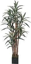 Nearly Natural 5006 Yucca Silk Tree, 5-Feet, Green