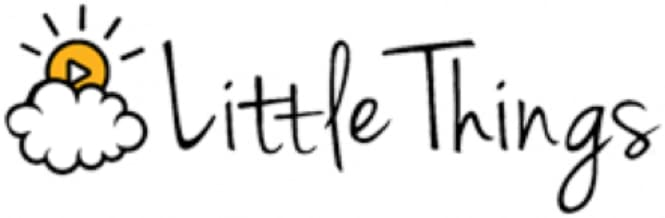 Best little things com diy Reviews