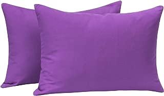 NTBAY Microfiber Toddler Pillowcases, 2 Pcs Zipper Closure Travel Pillow Covers, 13 x 18, Purple