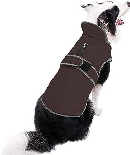 dog coat xs