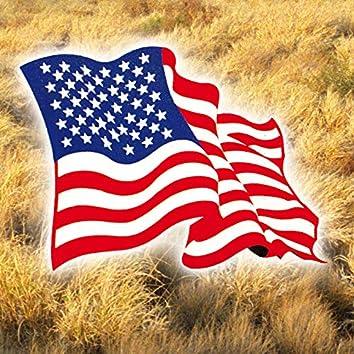 Modern Americana & Neofolk