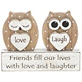 ukgiftstoreonline Friend Gift Owl Sentiment Table Top Mantle Plaque
