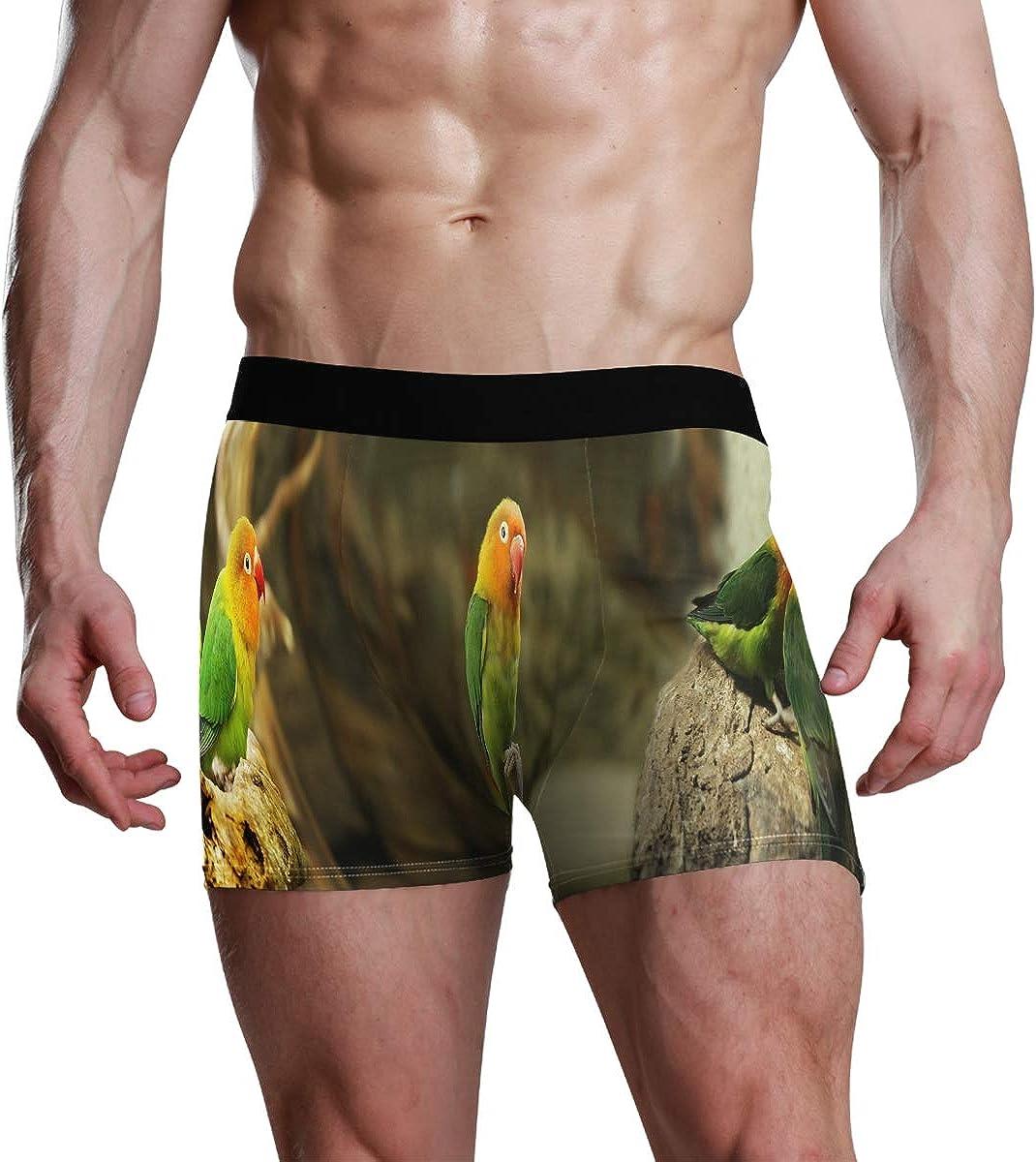 Men's Boxer Briefs Parrots Life Bikini Underwear Stretch Trunks Boys Underpants