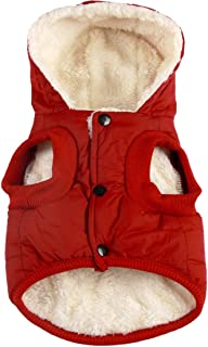 Best dog clothes chihuahua Reviews