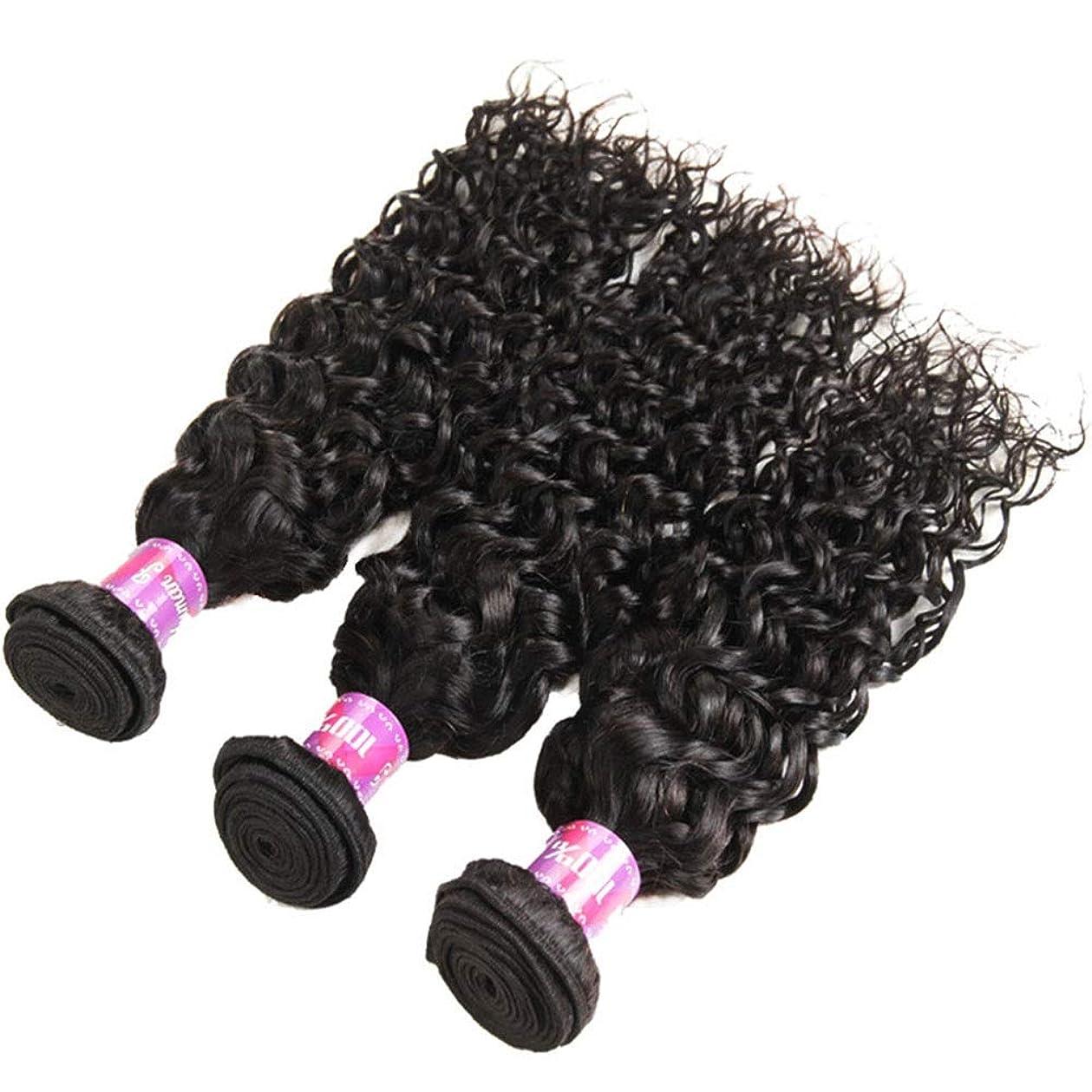 ジャングル今晩ソーシャルYrattary 人間の髪の毛の束ブラジルの髪の束水の波髪織りバンドルエクステンションカーリーヘアバンドルナチュラルカラー12インチ26インチ女性の合成かつらレースかつらロールプレイングかつら (色 : 黒, サイズ : 14 inch)