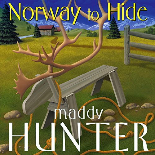 Norway to Hide audiobook cover art