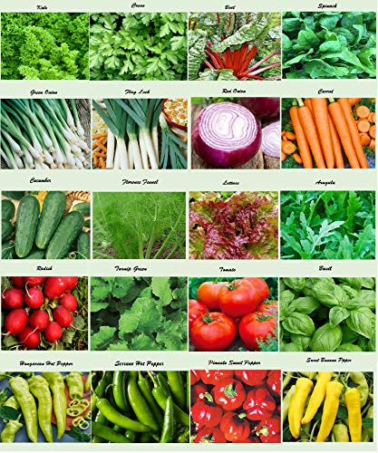 Set of 20 Assorted Organic Vegetable Seeds & Herb Seeds 20 Varieties Create a Deluxe Garden All...