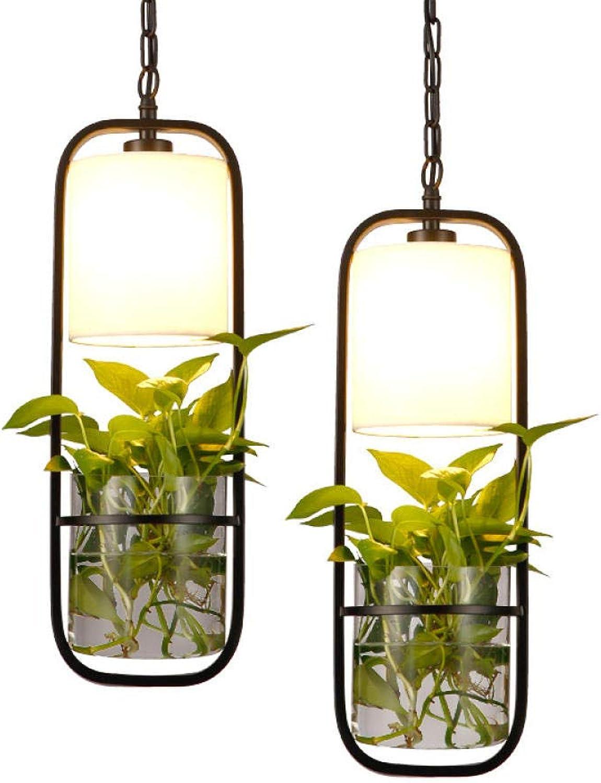 Wasserpflanze Schmiedeeisen Glas Hydrokultur Kronleuchter Stoffproduktion Kreativer Roman Stil Cafe Restaurant Deckenleuchte Durchmesser 17 cm