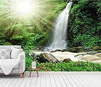 Bosakp カスタムアート写真壁紙サンシャイン滝壁装飾ポスターアート壁壁画壁ステッカ 100X50Cm