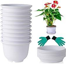گیاهان دارویی با ظرفیت 6 اینچ پلاستیکی در معرض تهیه ظروف با سینی برای گیاهان داخل سالن و فضای باز، ساکولنت ها، کاکتوس و گل 10 بسته