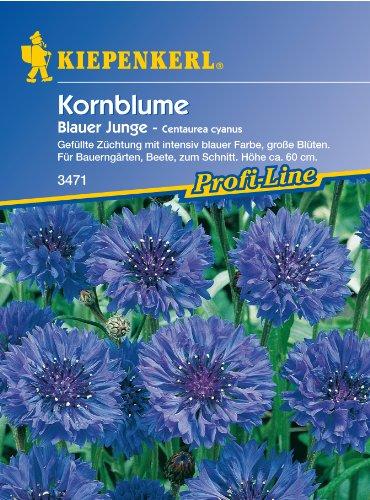 Sperli 3471 Blumensamen Kornblume blauer Junge, grün